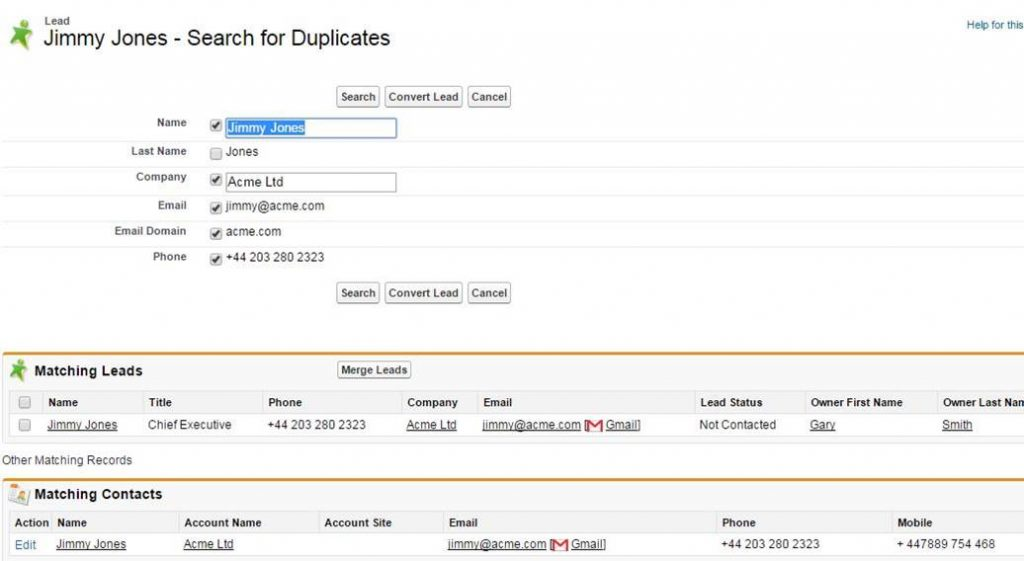 Click the Find Duplicates button to find Leads that match.