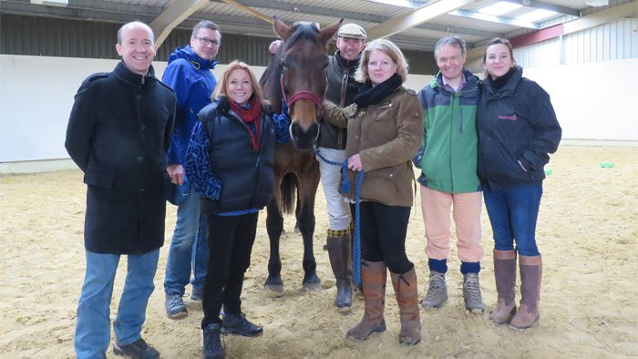 Develop Your Sales Leadership Through Courses With Horses