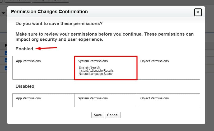 Confirm enabled system permissions within Einstein Search permission set
