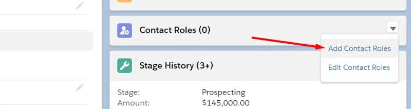 Add Contact Roles to the Opportunity via the Related List