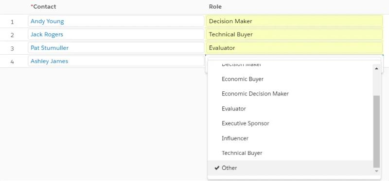 Adjust the Role of each Contact when adding Contacts to the Contact Roles