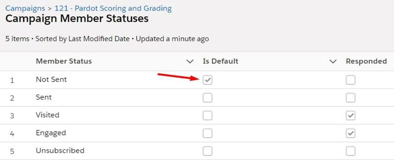 An example of the default checkbox on the Salesforce campaign member statuses