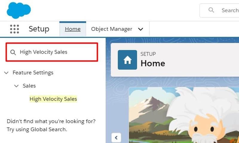 Search for High Velocity Sales in the Setup Search Bar